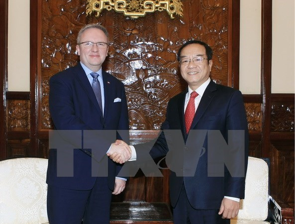 Vietnam suggests establishing inter-gov't committee with Poland hinh anh 1