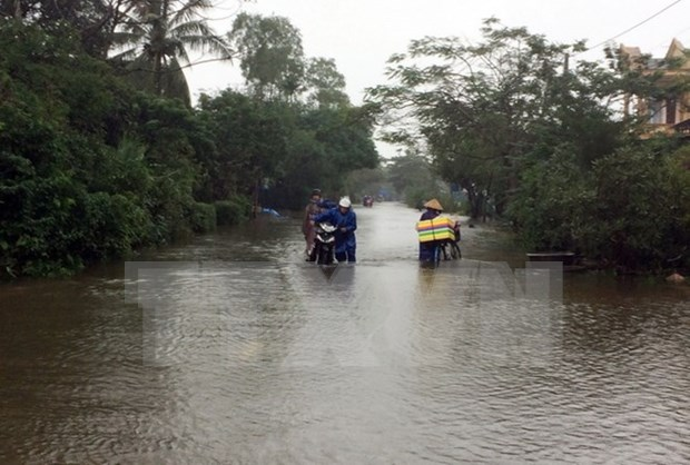 Deputy PM urges harder work to cope with widespread flooding hinh anh 1