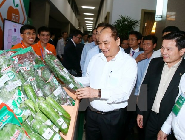 PM urges endeavours to turn Vietnam into agricultural powerhouse hinh anh 1