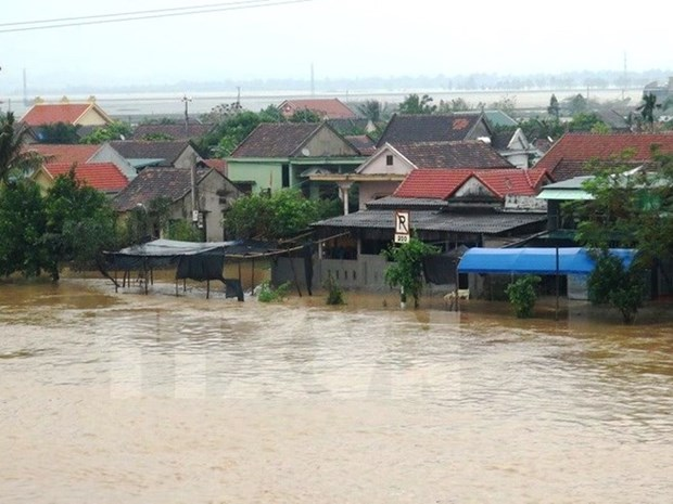 Central provinces strive to overcome flood consequences hinh anh 1