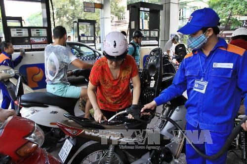 Petrol price up over 900 VND per litre hinh anh 1