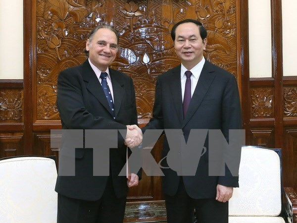 Human resources development key for Vietnam's growth: President hinh anh 1