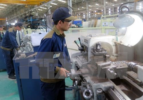 Number of newly-established firms sets record high hinh anh 1