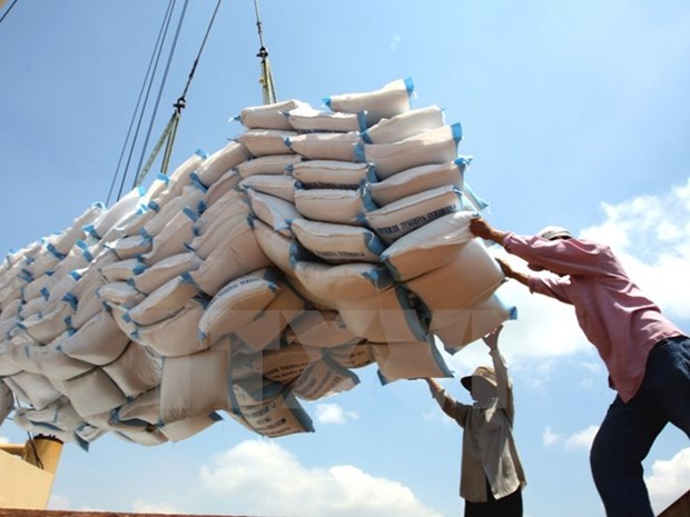 Vietnam earns 2.2 billion USD from rice export this year hinh anh 1