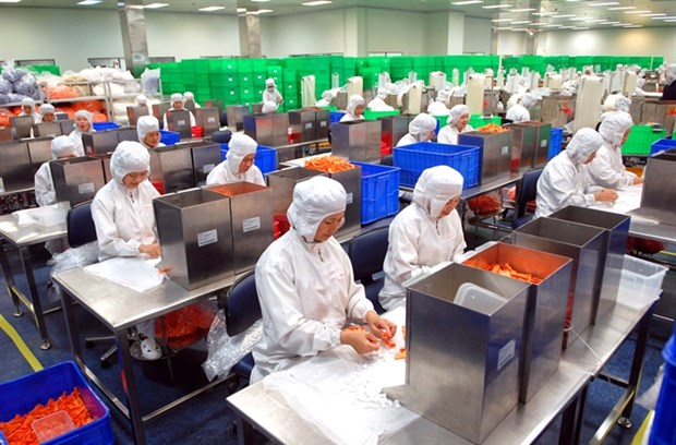 FDI disbursement at record high in 2016 hinh anh 1