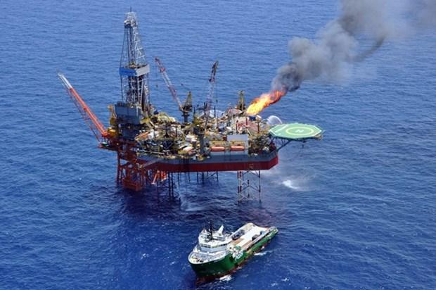 PetroVietnam's oil exploitation on target hinh anh 1