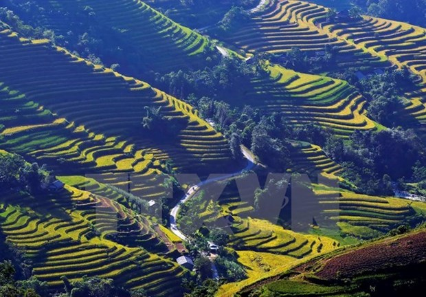 Northern Vietnam named Forbes' cheapest travel place hinh anh 1