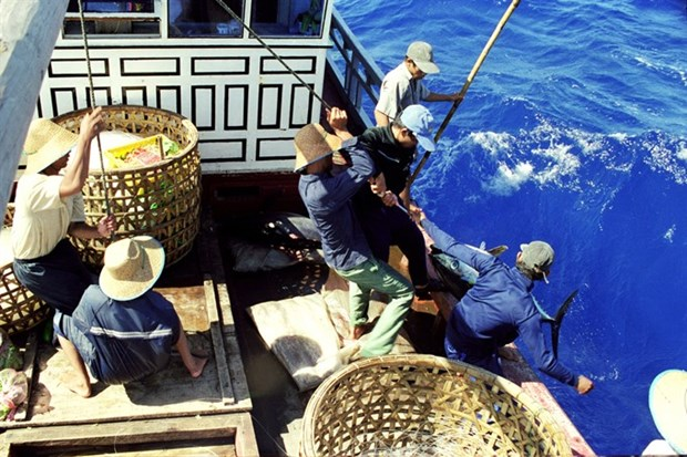 Legislators to keep tabs on fishermen's compensation hinh anh 1