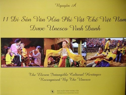 Photo book shows off Vietnam heritage hinh anh 1