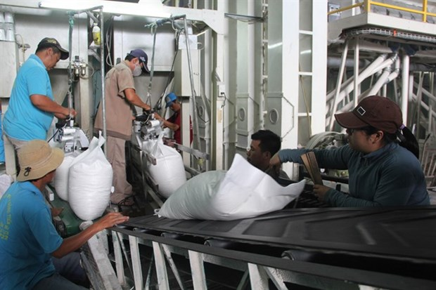Rice producers, exporters aim to increase consumption hinh anh 1