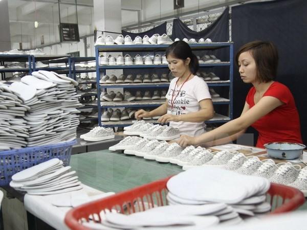 Leather, footwear sector forecasts 18 bln USD of export earnings hinh anh 1