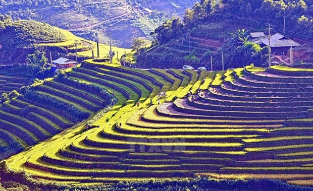 Eight Tay Bac localities enjoy fruitful tourism cooperation hinh anh 1