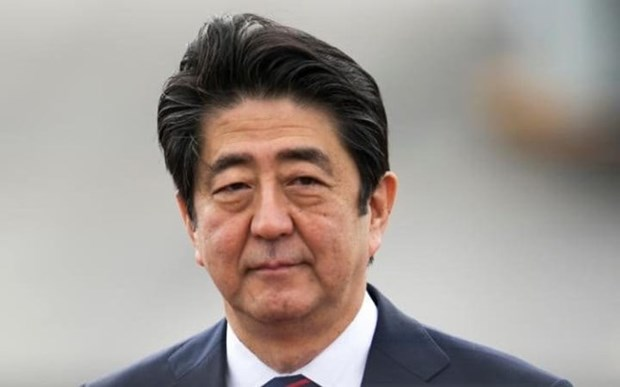 Japanese PM to visit Pacific Rim nations to strengthen ties hinh anh 1
