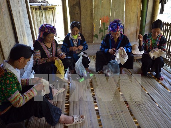 Localities urged to reduce poverty rate in ethnic minority regions hinh anh 1