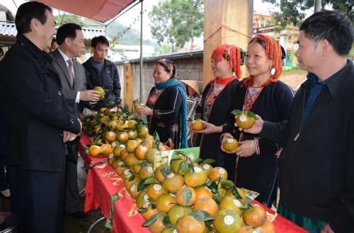 Luc Yen orange awarded collective trademark hinh anh 1