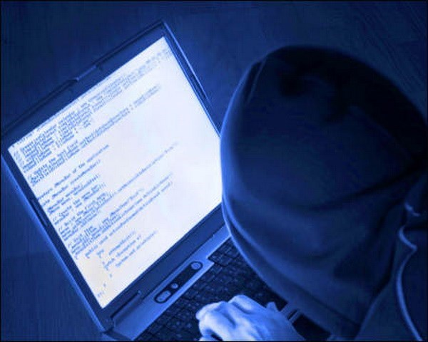Cyber attack losses increase in 2016 hinh anh 1