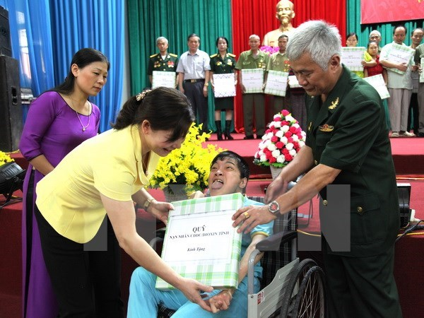 Defence Minister vows joint work with AO victims association hinh anh 1