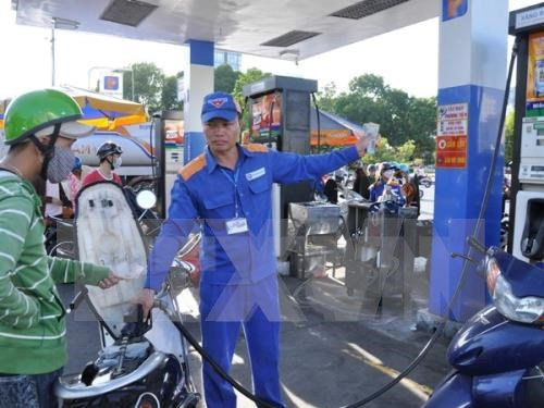Petrol prices remain unchanged in regular price adjustment hinh anh 1