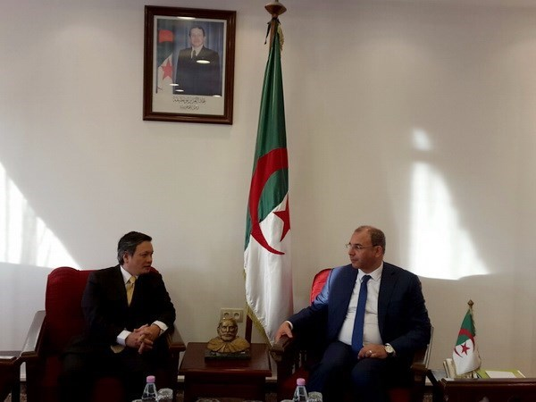 Ambassador urges boosting economic cooperation with Algeria hinh anh 1