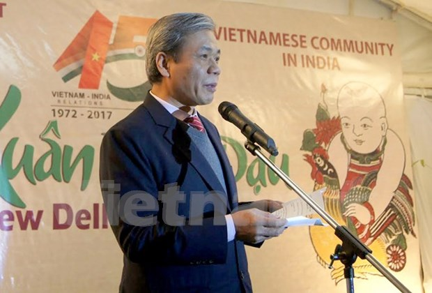 Vietnam, India mark diplomatic ties in New Delhi hinh anh 1