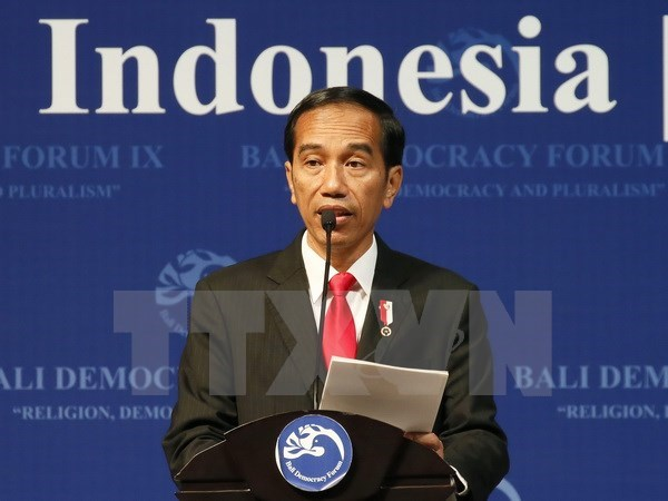 Indonesia turns to China for keeping economic growth hinh anh 1