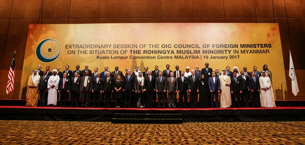 Islamic Organisation to send delegation to Myanmar hinh anh 1