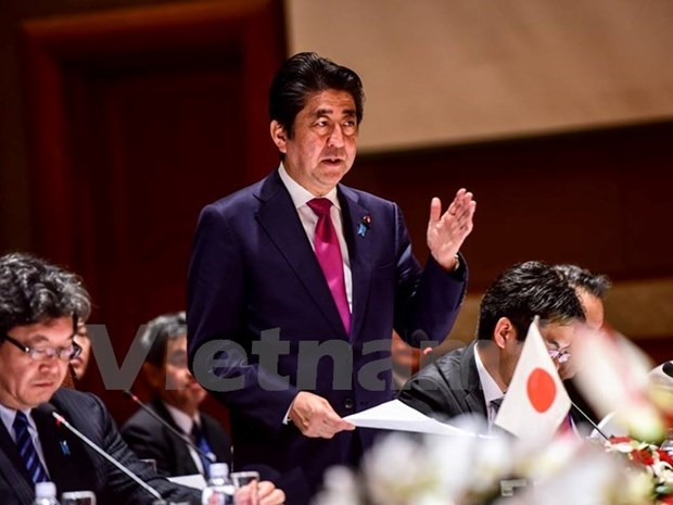 Japanese cabinet ratifies TPP hinh anh 1