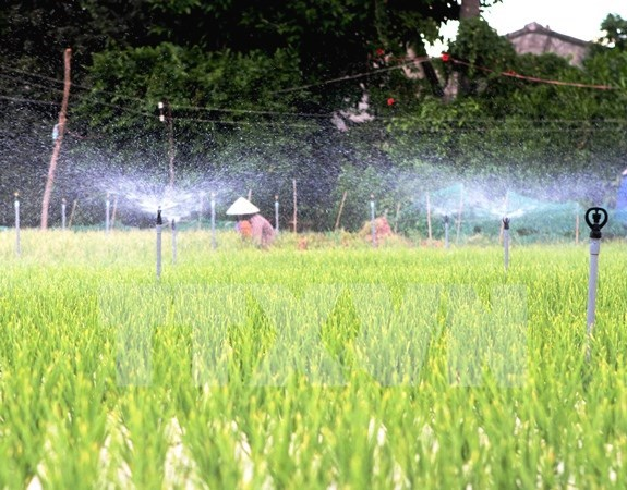 Mekong Delta province makes investment in irrigation hinh anh 1