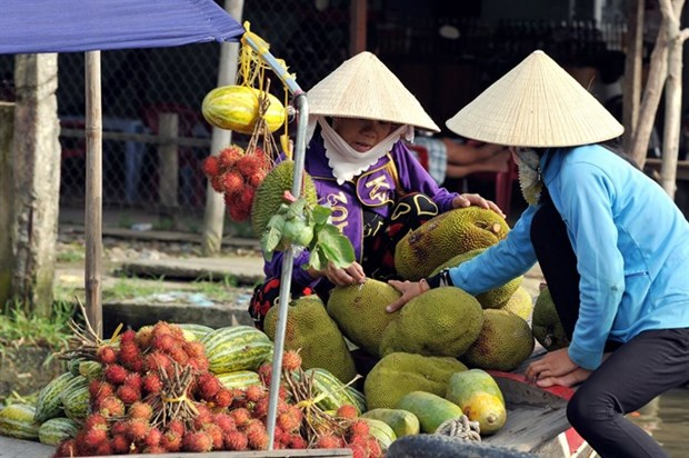 Government hopes new model will bear fruit hinh anh 1