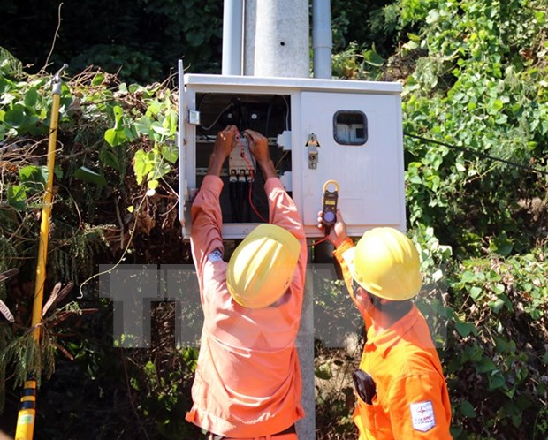 Better power access hoped to drive development in southern island hinh anh 1