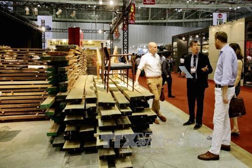 Timber supply matters to Vietnam's wood industry hinh anh 1
