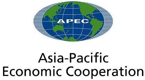 APEC 2017: Vietnam makes positive contributions to APEC hinh anh 1