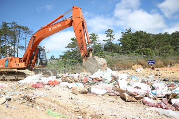 Illegal imported food items destroyed hinh anh 1