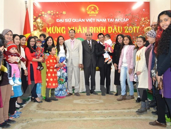 Vietnamese in Cambodia, Egypt celebrates traditional New Year hinh anh 1