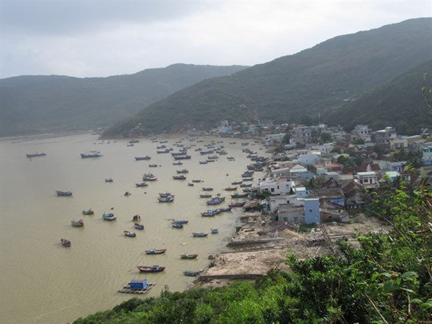 Hai Minh, a fishing village marked by beauty and peace hinh anh 1