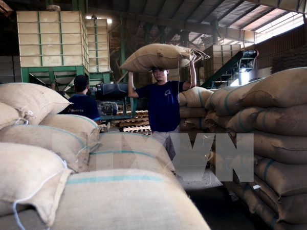 Algeria ranks fourth among Vietnam's export destinations in Africa hinh anh 1