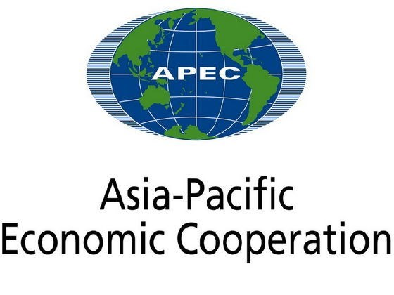 Vietnam's hosting of APEC 2017 helps promote national image hinh anh 1