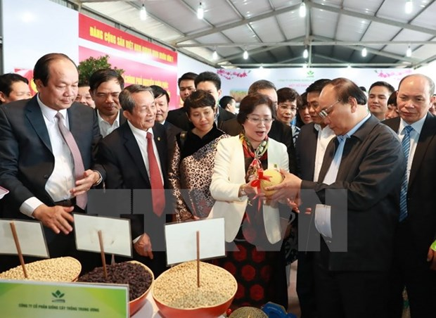 PM vows to introduce clean farm produce to the world hinh anh 1