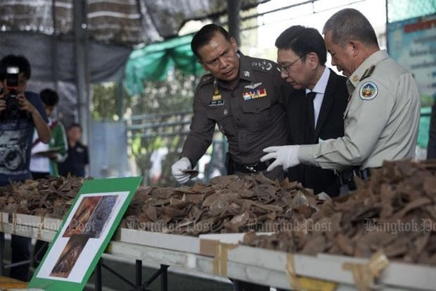 Thailand seizes three tonnes of pangolin scales hinh anh 1