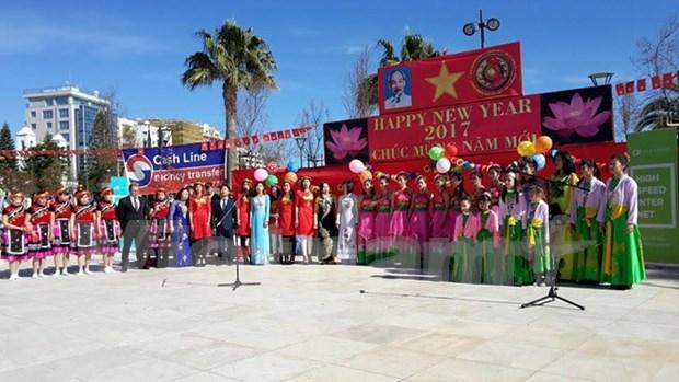 Vietnamese people in Cyprus celebrate Tet hinh anh 1
