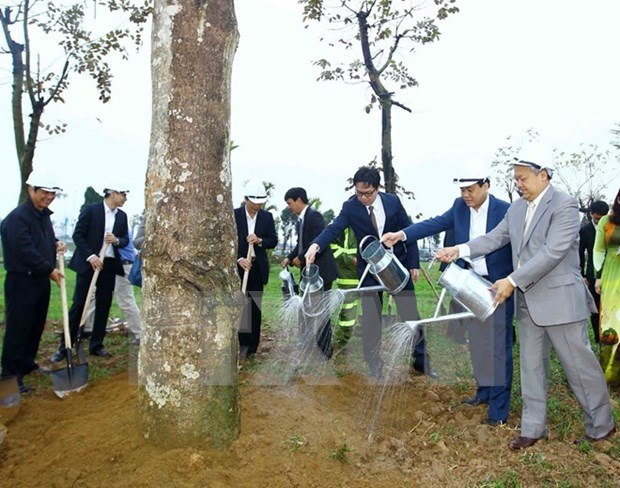 Hanoi launches tree-planting campaign hinh anh 1