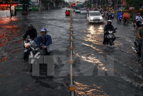 2018 deadline set for HCM City flood-control project hinh anh 1
