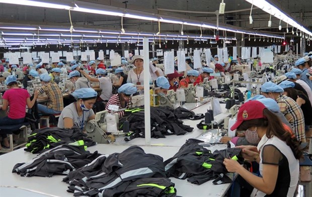 Most employees return to work after Tet hinh anh 1