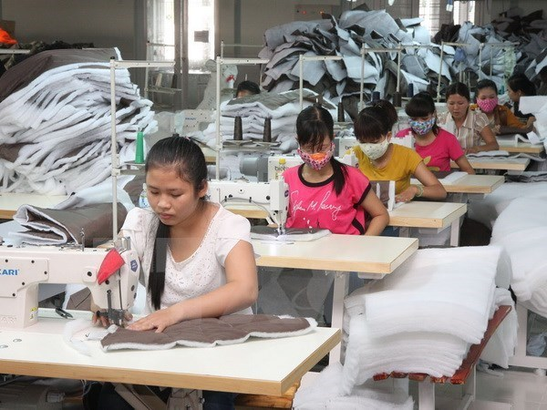 Newly-established firms register high capital in January hinh anh 1