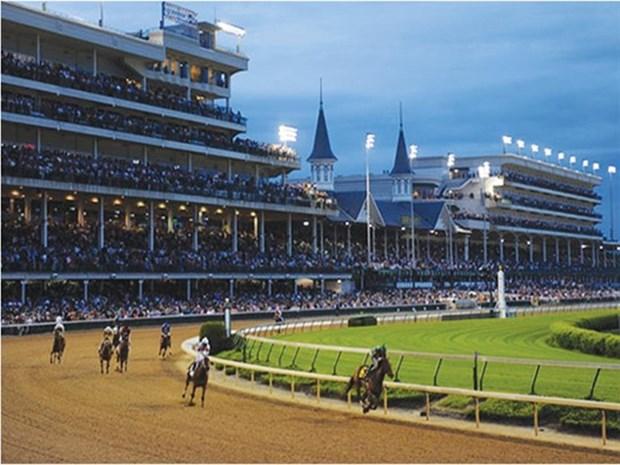 Government approves horse, dog racing gambling hinh anh 1