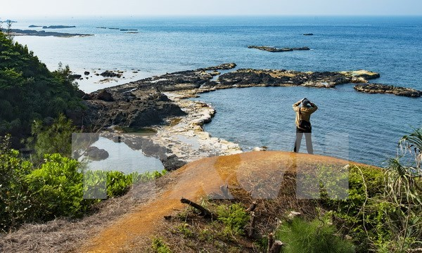 Ly Son Island needs proper planning for tourism development hinh anh 1