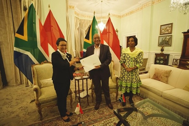 Indonesia, South Africa beef up trade ties hinh anh 1