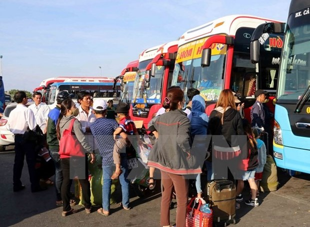 Violating coach operators forced to halt operations hinh anh 1