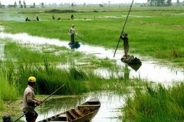 Mekong provinces work to build water pumping stations hinh anh 1