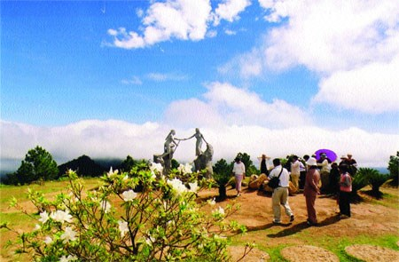 Lam Dong spends 57.3 million USD to conserve bio-diversity hinh anh 1